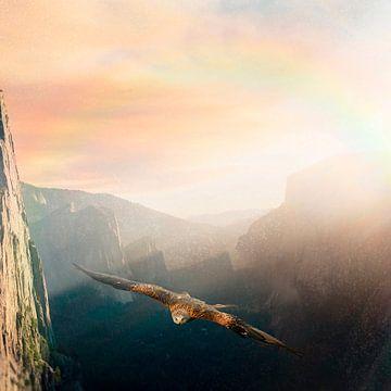 Flug über die Berge von Uwe Frischmuth
