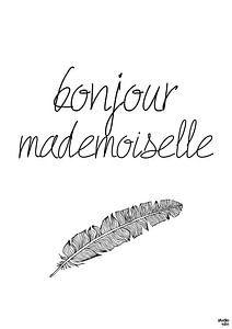 Bonjour Mademoiselle van