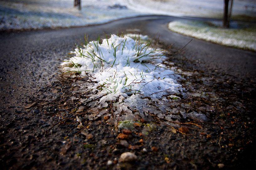 Sneeuw on the move van Wijs & Eigen