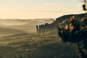 De apenstenen in het ochtendlicht van Tobias Reißbach