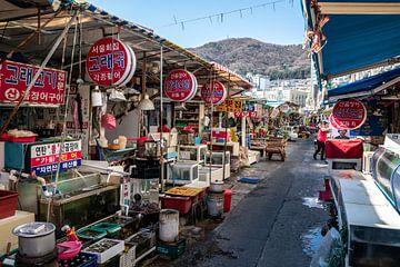 Jagalchi fish market in Busan van Mickéle Godderis