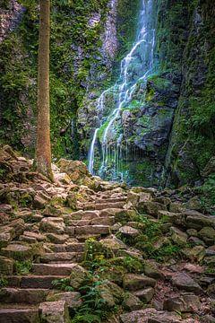 Der Burgbach-Wasserfall, Schwarzwald, Deutschland von Henk Meijer Photography