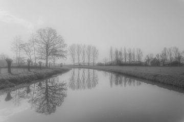Reflexion von Ans Bastiaanssen