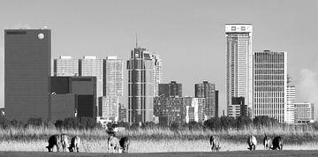 Skyline von Rotterdam von Pijnacker aus von Ton van Buuren