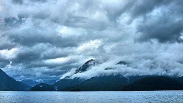 Bestemming Doubtful Sound van Wim van Berlo