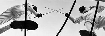 11 - Fencing van Irene Hoekstra