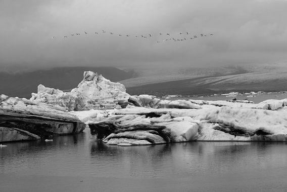 Jökulsárlón Glacier Lagoon met overvliegende zwanen