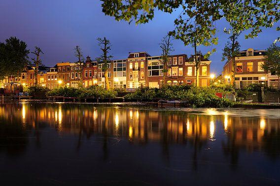 Bemuurde Weerd Oostzijde in Utrecht met kort gesnoeide bomen van Donker Utrecht