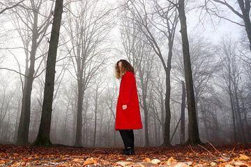 Mysteriöse Frau von Joris Pijper