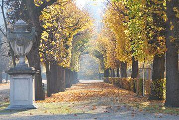 Allee im Herbst van Philipp Stelzel