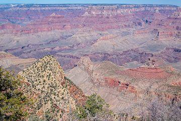 Grand Canyon in de sneeuw. van Patrick Vercauteren