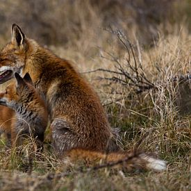Moeder en kind van Frits Hendriks
