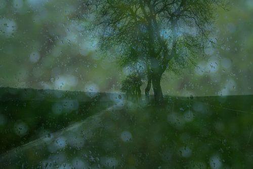 Nature morte avec la pluie