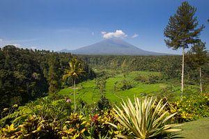 Uitzicht op de Mount Agung op Bali Indonesië van