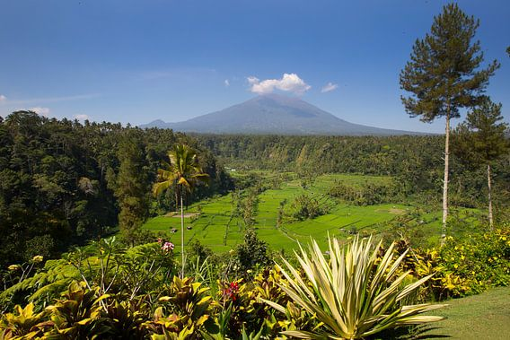 Uitzicht op de Mount Agung op Bali Indonesië