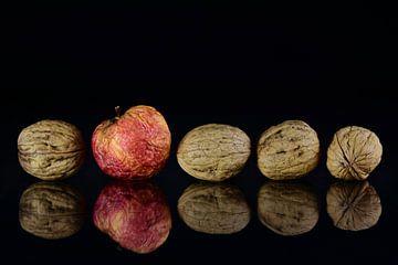Appel en noten van Ulrike Leone