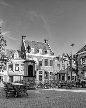 Waterpomp op De Plaats, IJsselstein van Tony Buijse