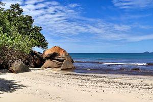 Traumhafter Stand auf den Seychellen