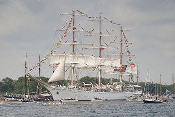 Dar Mlodziezy -  Sail Amsterdam van Barbara Brolsma