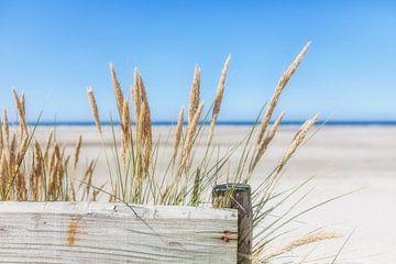 Zomer, zon, zee, zand en rust sur R Smallenbroek