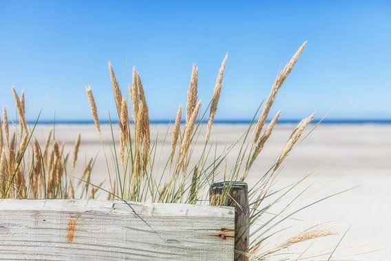 Zomer, zon, zee, zand en rust