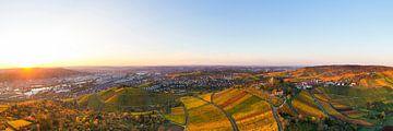 Stuttgart mit der Grabkapelle aus der Vogelperspektive von Werner Dieterich