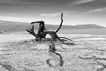 Dead Vlei in de Namib woestijn, Namibie, Afrika van Tjeerd Kruse