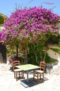 stoelen en tafel onder paarse Bougainvillea van Carmela Cellamare