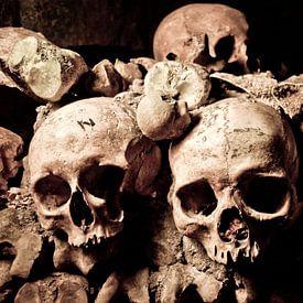 Schedels in de catacomben van Parijs van Jeroen Middelbeek