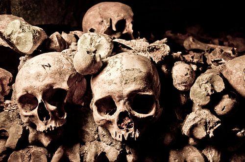 Schedels in de catacomben van Parijs van