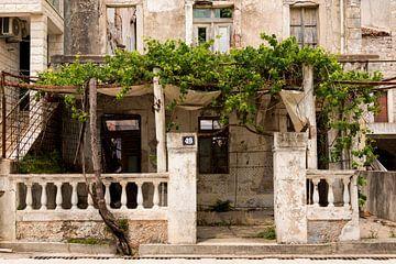 Old-House Montenegro sur Coby Zwartbol