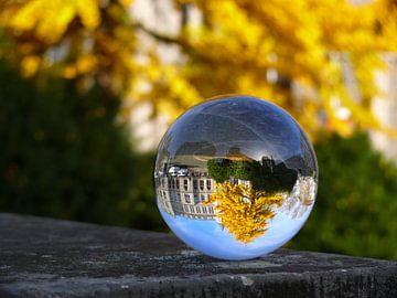 Gingko-boom in de herfst, glasbollenfotografie van RaSch_Design