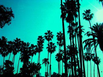Palms von simone gablan