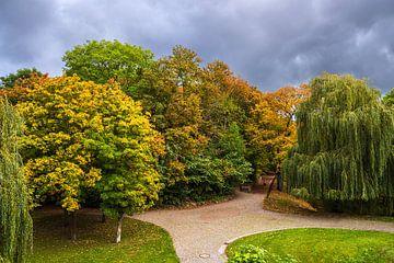 Blick auf herbstlich gefärbte Bäume in Rostock von Rico Ködder