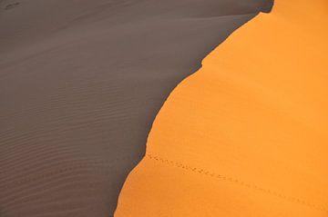 Sonnenuntergang in der Sahara von Theo van Woerden