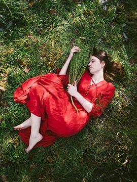 Märchen in Rot von Mirella Lukens