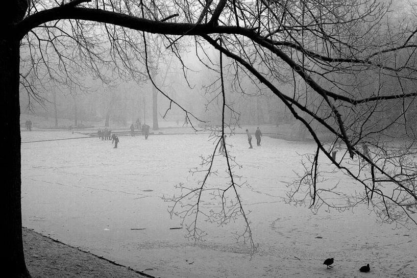 Noorderplantsoen in de Winter 12 van Ronald Hulsebos
