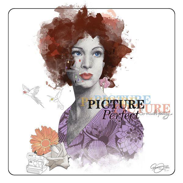 Picture Perfect van Anne Oszkiel-van den Belt