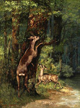 Hirsche im Wald, Gustave Courbet, 1868 von Atelier Liesjes