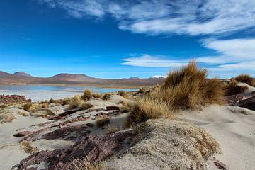 Boliviaanse hoogvlakte von Marieke Funke