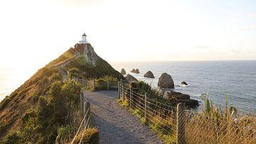 Het pad naar de vuurtoren van Nugget Point - Nieuw Zeeland van Be More Outdoor
