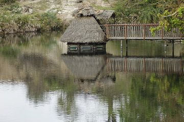 hutje op het water van Laurence Van Hoeck