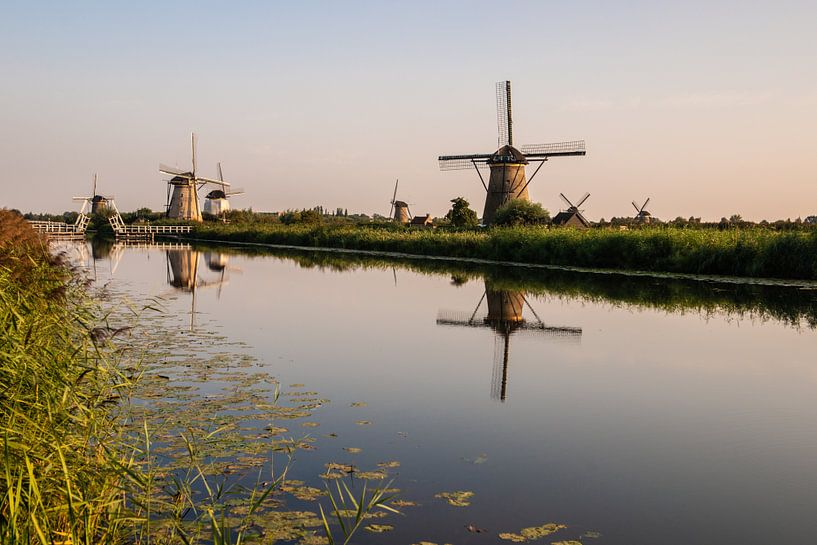 Kinderlijke Windmolens langs het water. van Brian Morgan