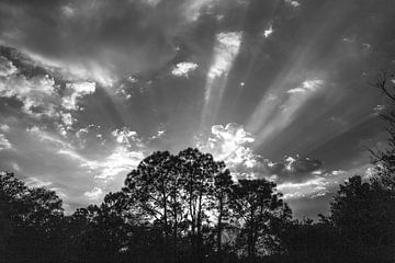 zonsondergang in Leesburg von Martin van der Sanden