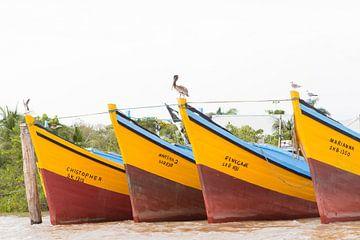 Vissersboten op de Surinamerivier van rene marcel originals