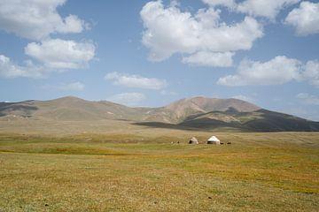 Yurts op het Song Kul plateau van Mickéle Godderis
