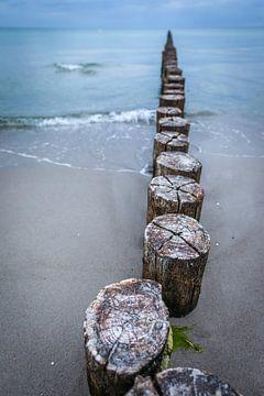 Alte Buhnen am Strand in Zingst von Christian Müringer