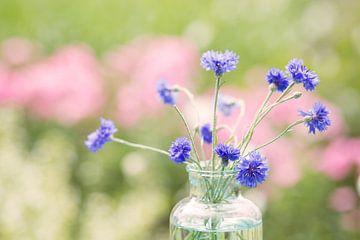 Blauwe Kornblume sur Ellen Hylkema