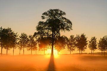 Vroege zonsopgang tijdens een mooie lentedag over de Zwartendijk van Sjoerd van der Wal