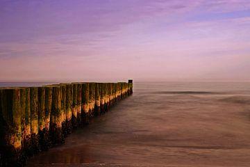 Buhnen am Meer im Sonnenuntergang